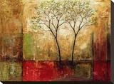 Brillo matinal I Reproducción de lámina sobre lienzo por Mike Klung