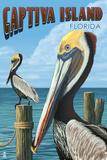 Captiva Island, Florida - Brown Pelican Art par  Lantern Press