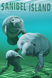 Sanibel Island, Florida - Manatees Poster von  Lantern Press