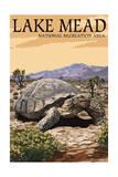 Lake Mead - National Recreation Area - Tortoise Art by  Lantern Press