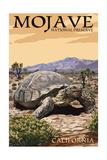 Tortoise - Mojave National Preserve, California Posters by  Lantern Press