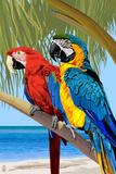 Papagaios Pôsters por  Lantern Press