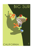 Big Sur, California - Tree Frog Posters af  Lantern Press