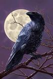 Raven and Moon Purple Sky Prints by  Lantern Press