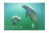 Florida - Manatees Underwater Kunstdrucke von  Lantern Press