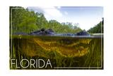 Florida - Alligator Underwater Poster von  Lantern Press