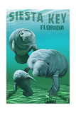 Siesta Key, Florida - Manatees Poster von  Lantern Press