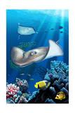 Rays and Reef Poster von  Lantern Press