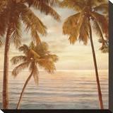 Palms on the Water II Opspændt lærredstryk af John Seba