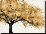 Golden Blossoms Toile tendue sur châssis par Kate Bennett