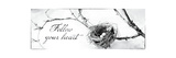 Nest and Branch III Follow Your Heart Stampa giclée premium di Debra Van Swearingen
