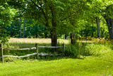 Country Meadow Wooden Fence in Berkshires Photo Poster Print Pósters