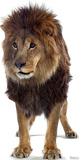 Lion Lifesize Standup Cardboard Cutouts