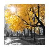 Park Pretty II Kunstdrucke von Assaf Frank