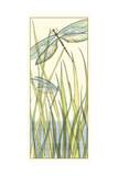 Gossamer Dragonflies I Prints by Chariklia Zarris