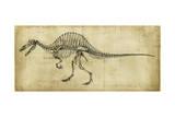 Spinosaurus Study Art by Ethan Harper
