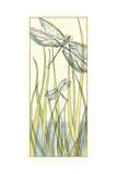 Gossamer Dragonflies II Poster by Chariklia Zarris