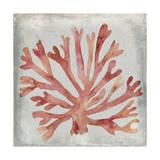 Watercolor Coral III Posters por Megan Meagher