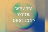 What'S Your Destiny Poster