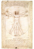 Vitruvian Man 1492 Leonardo Da Vinci Art Poster Posters by  Leonardo da Vinci