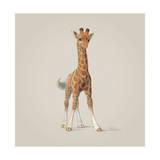 Giraffe Giclée-tryk af John Butler Art