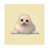Seehund Giclée-Druck von John Butler Art