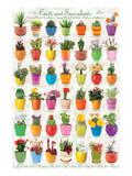 Cactus & Succulents Affiches