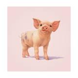 Schwein Giclée-Druck von John Butler Art