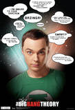 Big Bang Theory Sheldon Quotes Television Poster Posters