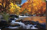 River of Gold Stretched Canvas Print by Mike Jones