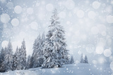 Christmas Background with Snowy Fir Trees Lámina fotográfica por  melis