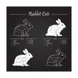 Rabbit Meat Cuts Scheme - Chalkboard Kunstdrucke von  ONiONAstudio