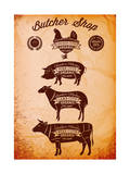 Vector Diagram Cut Carcasses Chicken, Pig, Cow, Lamb Posters by  111chemodan111