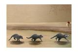 If You Were A Raccoon Prints by Nancy Tillman