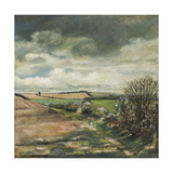 Storm Clouds over Angmering Estate, 2007 Giclee Print by Margaret Hartnett