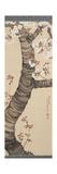 """Peinture """"Cerisier En Fleur"""" Reproduction procédé giclée par Shitsuhitsu Oda"""
