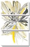 A Sunny Bloom Prints by Rebecca Meyers