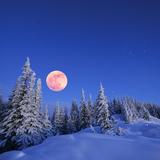 Winter Landscape in the Mountains at Night. A Full Moon and a Starry Sky. Carpathians, Ukraine Fotografisk trykk av  Kotenko