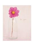 Quiet Floral Setting 1 Giclée-Premiumdruck von Susannah Tucker