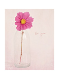 Quiet Floral Setting 1 Stampa giclée premium di Susannah Tucker