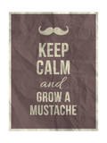 Keep Calm and Grow A Mustache Quote Julisteet tekijänä  ONiONAstudio
