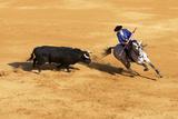 Bullfight, Jerez De La Frontera, Cadiz Province, Andalusia, Spain Fotografie-Druck von Neil Farrin
