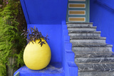 The Blue and Yellow Contrast Found in the Majorelle Garden. Marrakech, Morocco Fotografisk tryk af Mauricio Abreu