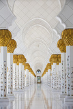 United Arab Emirates, Abu Dhabi, Sheikh Zayed Grand Mosque Fotografisk trykk av Jane Sweeney