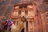Camel in Front of the Treasury, Petra, Jordan, Middle East Fotografisk tryk af Neil Farrin