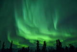 Aurora Borealis at Chena Hot Springs, Fairbanks, Alaska, Usa Photographic Print by Christian Heeb