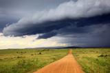 Landscape, Maasai Mara National Reserve, Kenya Fotografisk tryk af Ivan Vdovin