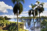 Argentina, Iguazu Falls National Park, (Unesco Site) Fotoprint av Michele Falzone