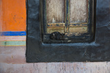 A Cat in the Doorway of the Jokhang Temple, Lhasa, Tibet Photographic Print by Michael Melford