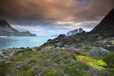Sunset over a Landscape of Fjords, Mountains, and Wildflowers in Bloom Photographic Print by Keith Ladzinski